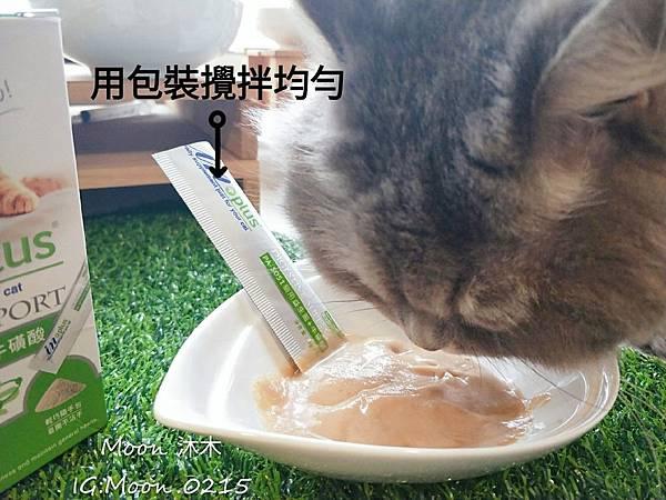 in plus 益生菌 貓評價 PA-5051 貓用益生菌+牛磺酸 海藻粉 艾斯克 寵物 食品_190501_0007.jpg