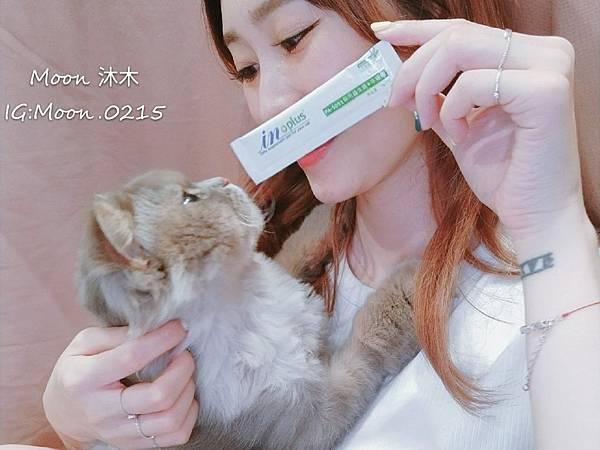 in plus 益生菌 貓評價 PA-5051 貓用益生菌+牛磺酸 海藻粉 艾斯克 寵物 食品_190501_0009.jpg