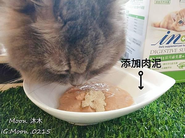 in plus 益生菌 貓評價 PA-5051 貓用益生菌+牛磺酸 海藻粉 艾斯克 寵物 食品_190501_0013.jpg