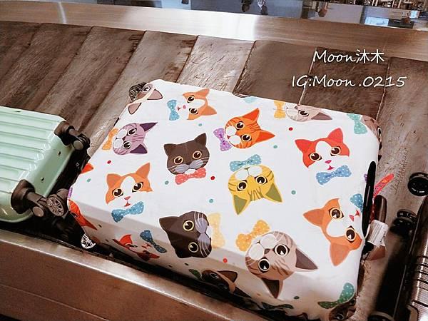 貓樂園 貓奴創意市集 貓咪週邊商品 貓咪圖案 LED鏡子 貓咪行李套 貓咪帽子 漁夫帽 貓咪包_31.jpg