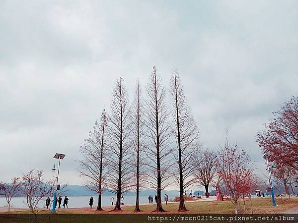 韓國 京畿道 陽平 兩水頭 京義中央線 景點 韓劇拍攝景點 她很漂亮 內在美 兩水站 冬季兩_14.jpg