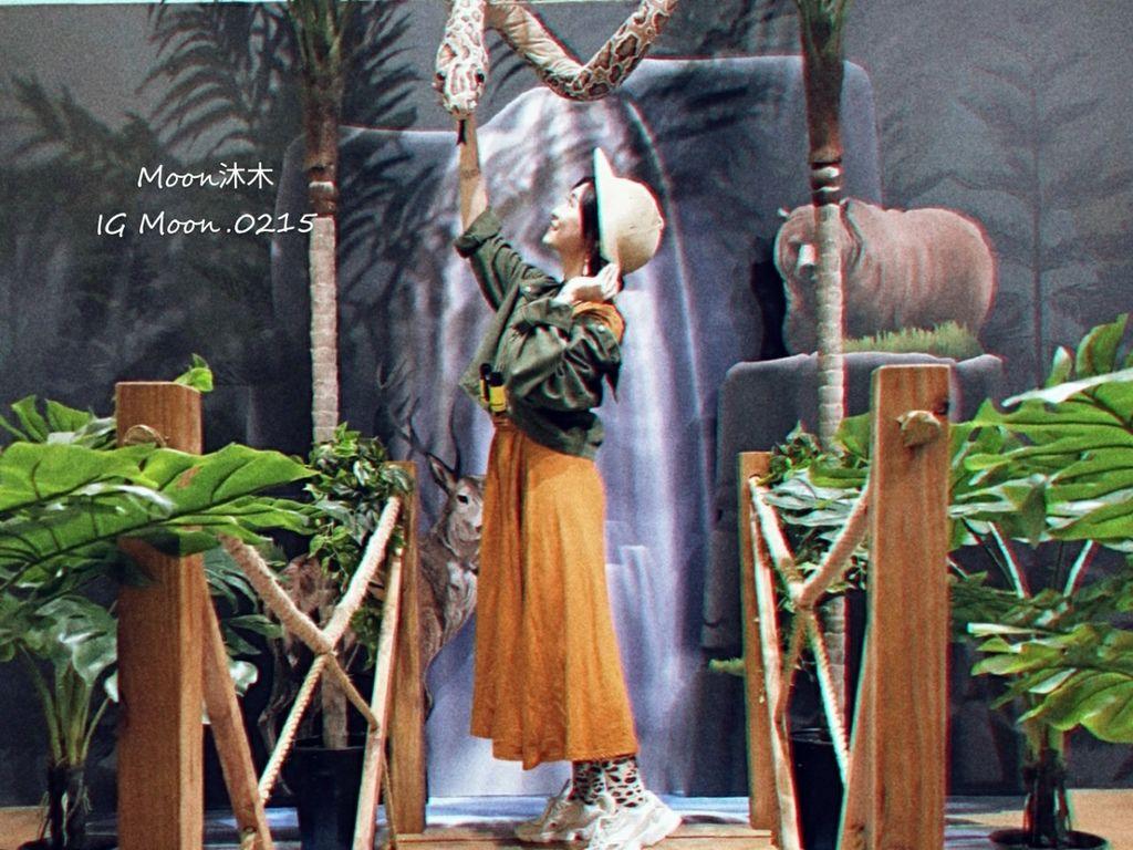 BELLAVITA 週年慶 展覽 奇幻叢林 熱帶叢林 小市集 拍照經典 Ig打卡 台北景點_190910_0003.jpg