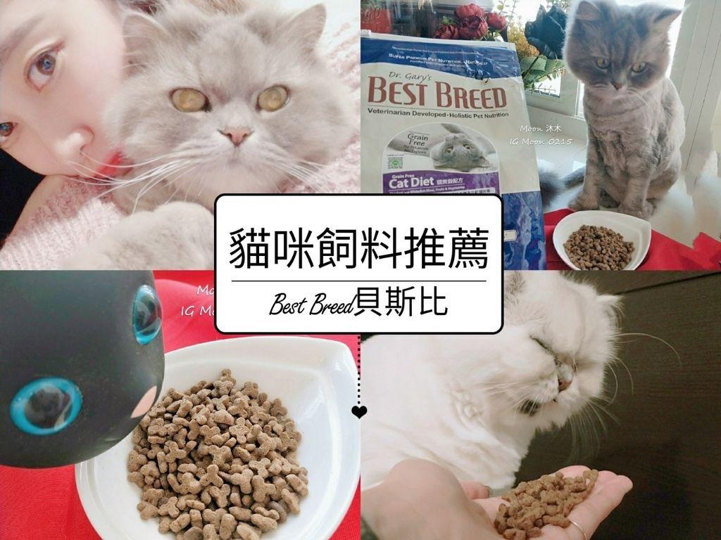 2020貓咪飼料推薦 無穀飼料推薦 貝斯比無穀貓 非基因飼料推薦 那個牌子貓飼料好 貓飼料_23.jpg