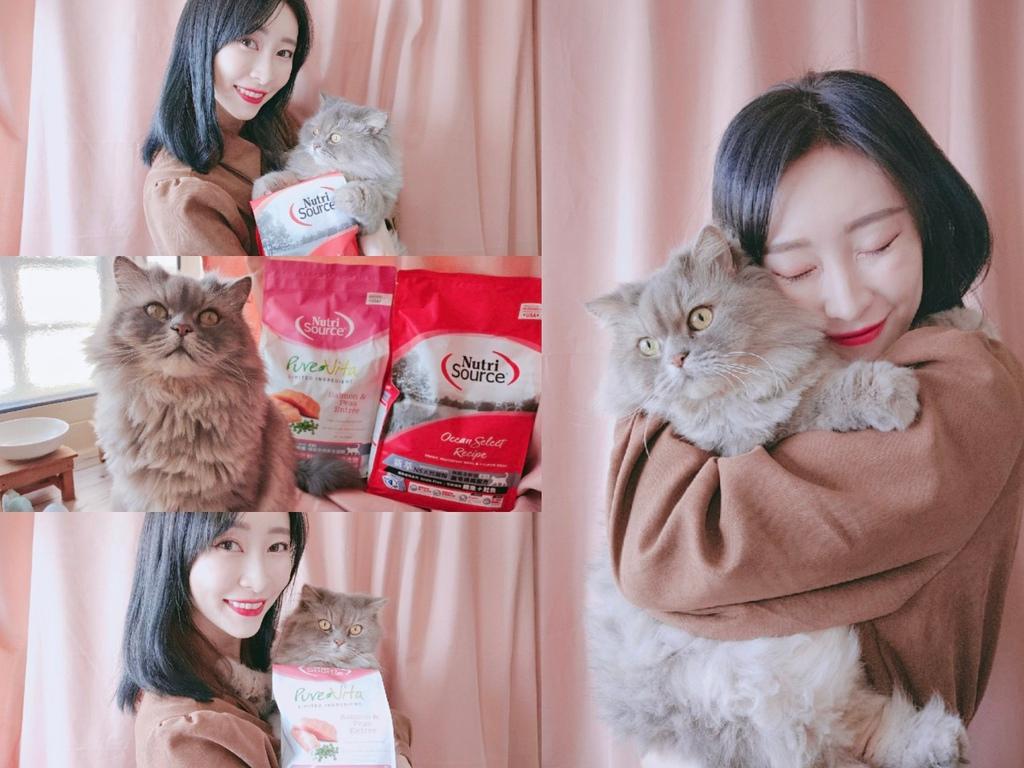 貓咪飼料推薦2021 NutriSource新萃 天然寵糧 無榖貓飼料 貓飼料怎麼選_201129_1.jpg