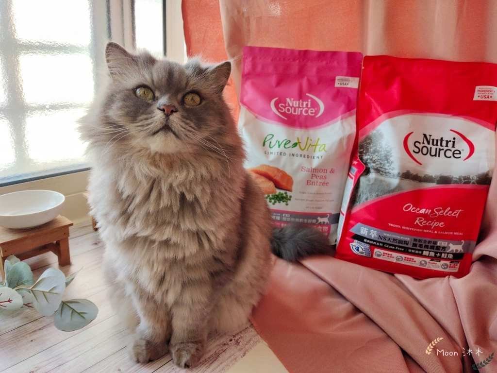 貓咪飼料推薦2021 NutriSource新萃 天然寵糧 無榖貓飼料 貓飼料怎麼選_201129_43.jpg