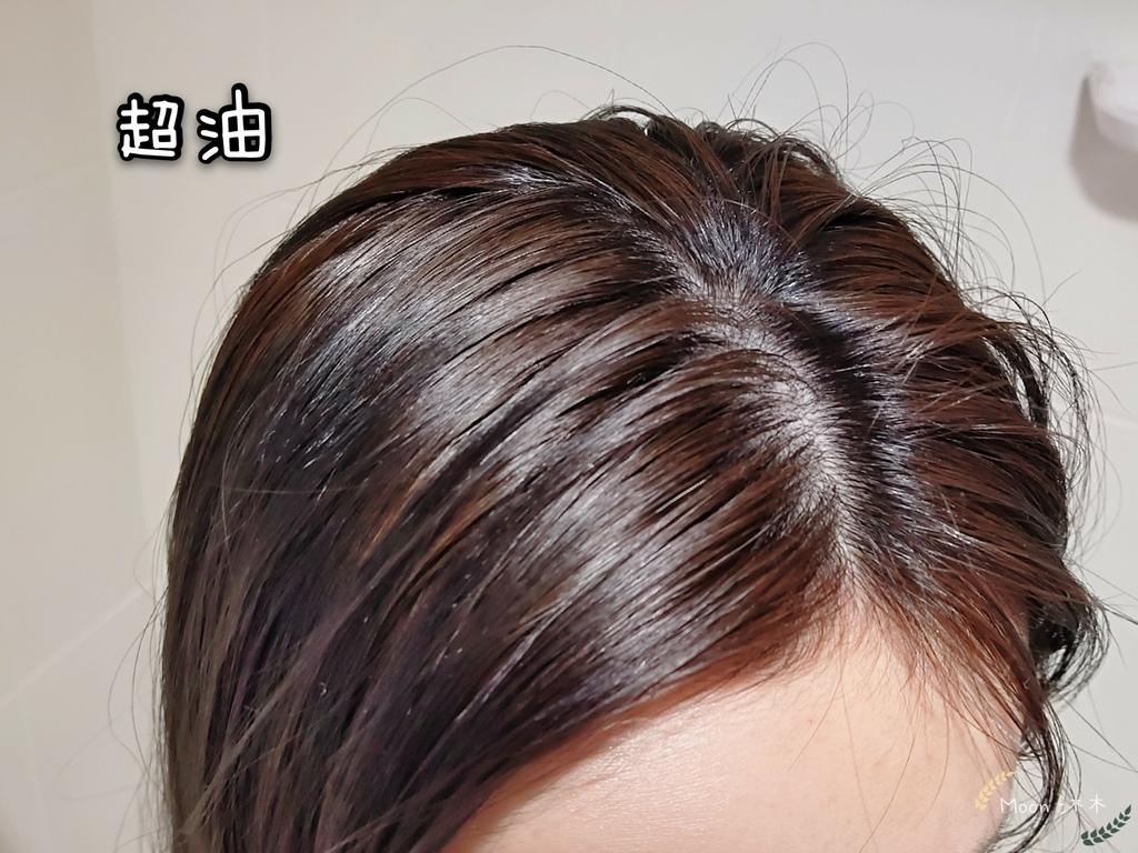 油頭洗髮精 推薦品牌 SIRO洗髮精評價  1號健髮洗髮露 1號修護護髮素 2號控油洗髮露_210213_37.jpg