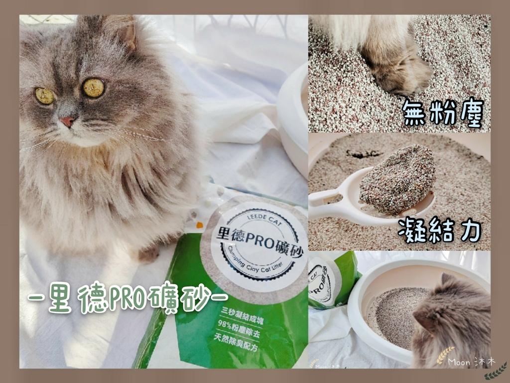 里德貓沙 礦物沙推薦 貓砂推薦2021_210408_0.jpg