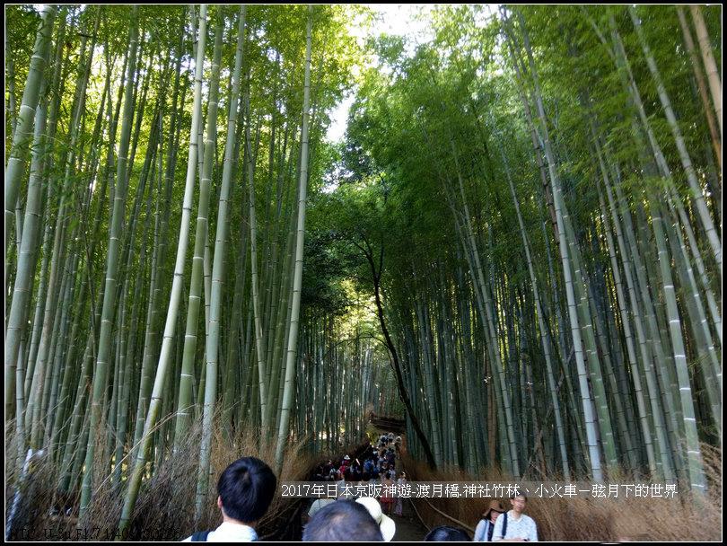 2017年日本京阪神遊-嵐山之旅 (34).jpg