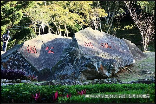 2017年溪洲公園落羽松初拍 (18).jpg