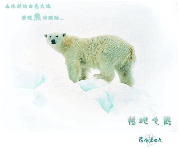 *極地之熊*1.jpg