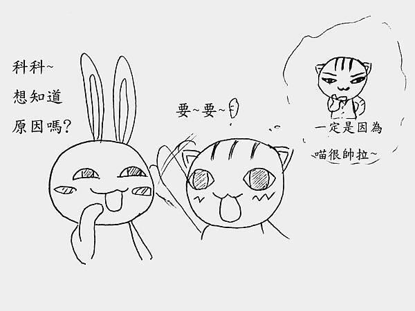 福神貓麻吉 (2).JPG
