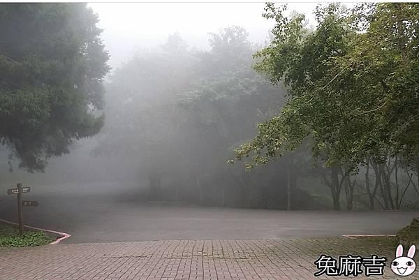 大雪山小雪山 (27).jpg