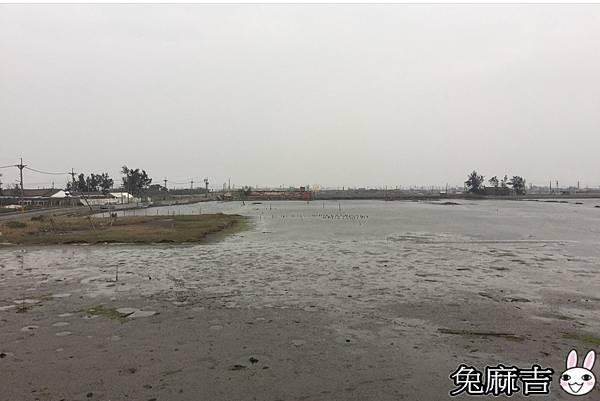 成龍集會所及濕地 (34).jpg