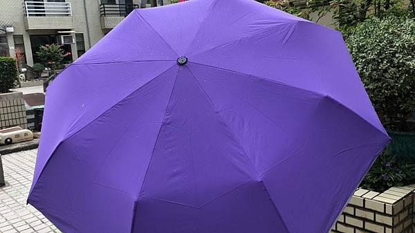 雨傘家族 (16) (1024x576).jpg