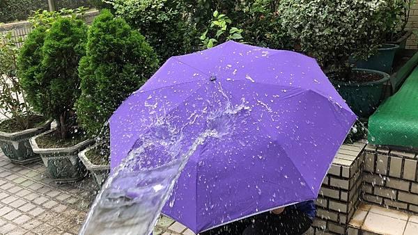 雨傘家族 (14) (1024x576).jpg