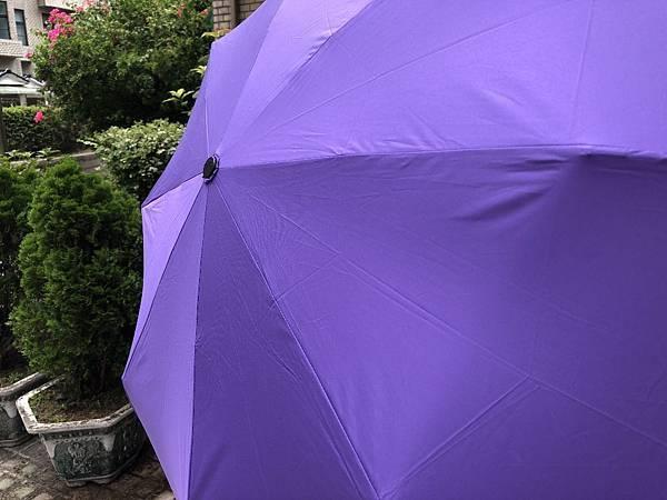 雨傘家族 (13) (1024x768).jpg