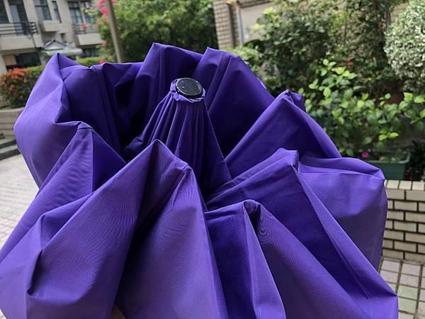 雨傘家族 (12) (1024x768).jpg