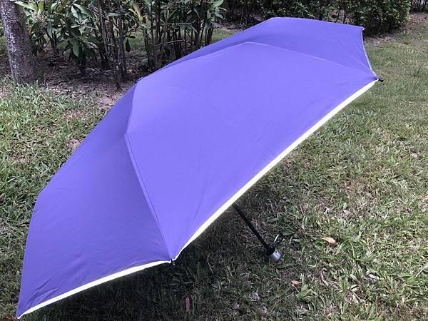 雨傘家族 (9) (1024x768).jpg