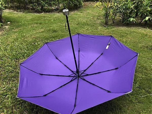 雨傘家族 (5) (1024x768).jpg