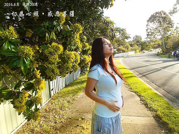孕期23週