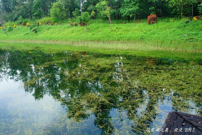 2013-08琵琶湖之晨4