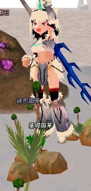 瑪奇Mabinogi MOD 魔物獵人2G 麒麟套裝3.jpg