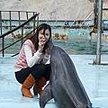 很友善的海豚