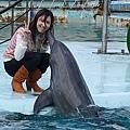 與海豚親親