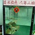 三隻鯰魚長輩
