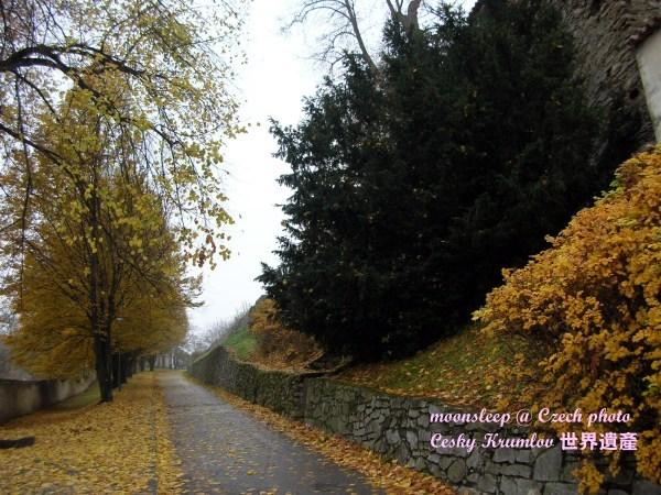 落葉飄飄,庫倫洛夫最美麗的小路之ㄧ