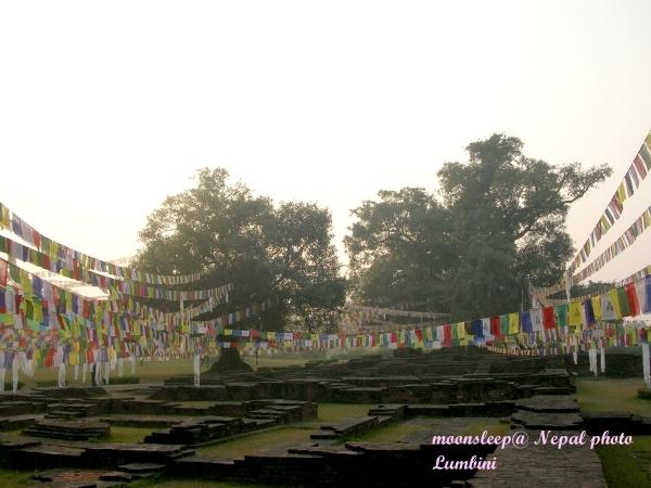 倫比尼Lumbini的千年僧院遺跡