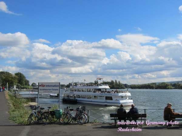萊茵河畔的遊船碼頭