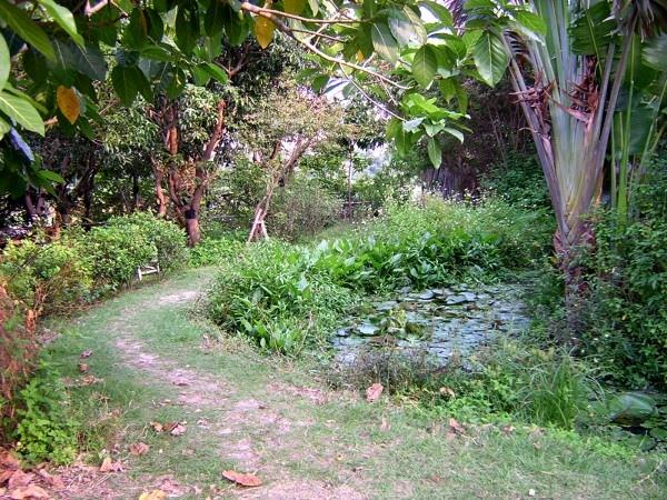處處可見自然生態的步道