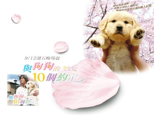 電影─與狗狗的10個約定