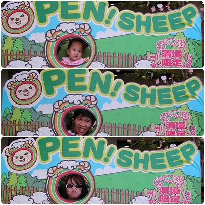 OpenSheep