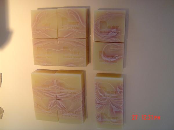 皂聚3.JPG