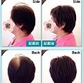 樂活銀髮醫療假髮 (1)