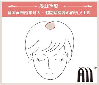 微增髮 髮片 (1)