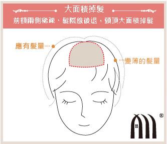 微增髮 髮片 (3)