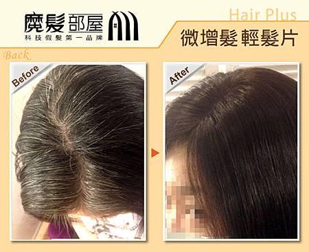 髮片 (1)
