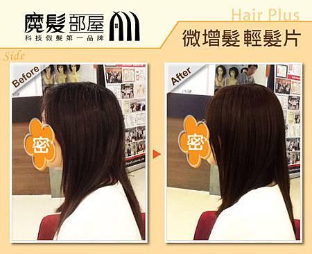 髮片 (2)