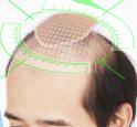 Domo Hair