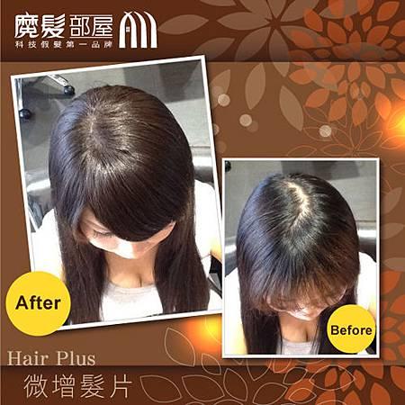 增髮髮片 (2)