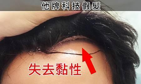 冒牌假髮 (2).jpg