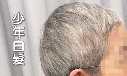 白髮.jpg
