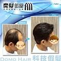 髮片髮型.jpg