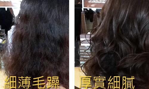 增髮 (3).jpg