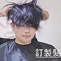 假髮增髮 (4).jpg