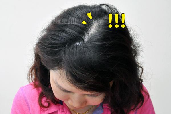 纖維髮粉增髮前1.jpg