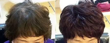 假髮遮白髮 (1).jpg